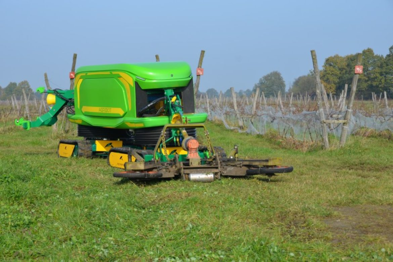 Agribot il robot dal pollice verde