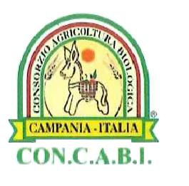 concabi